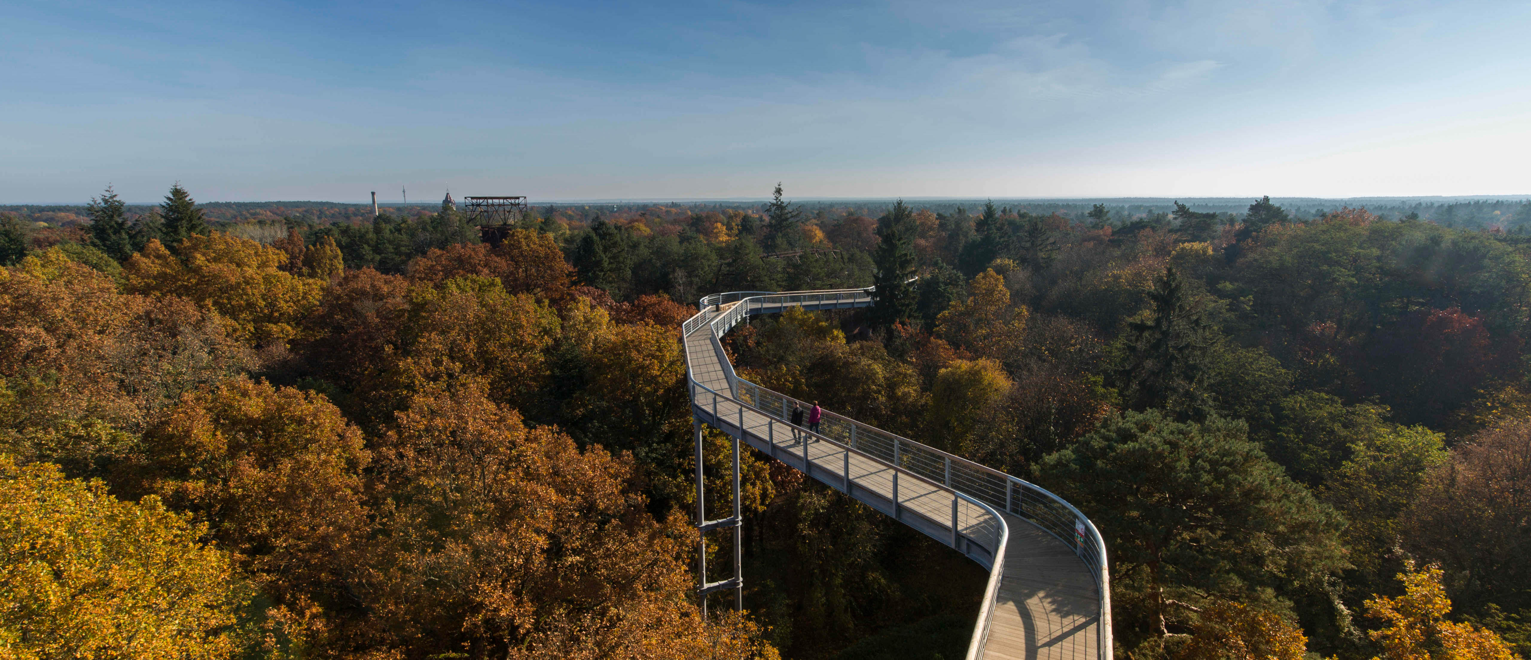 Herbstlicher Baumkronenpfad in Beelitz-Heilstätten